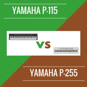 YAMAHA P-115 VS P-255