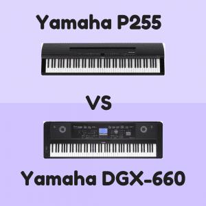 yamaha p255 vs yamaha dgx 660 comparison review digital piano review guide. Black Bedroom Furniture Sets. Home Design Ideas