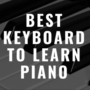 Discover the best keyboards to learn piano on!